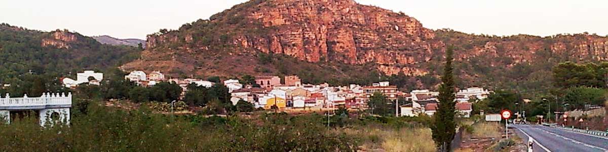 olocau-BANNER